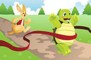 Tartaruga atravessa a meta em 1º lugar